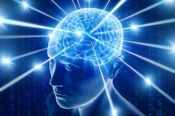 druzeljubivi mozak.jpg