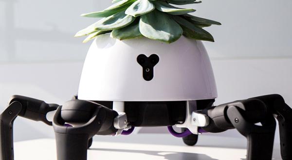 Robot koji prati Sunce.png